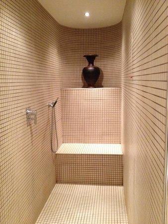 Radisson Blu Hotel, Milan: Walk in shower