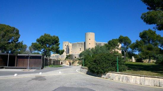 Castell de Bellver (Schloss Bellveder): Castillo de Bellver ,uno de los Pulmones de la ciudad