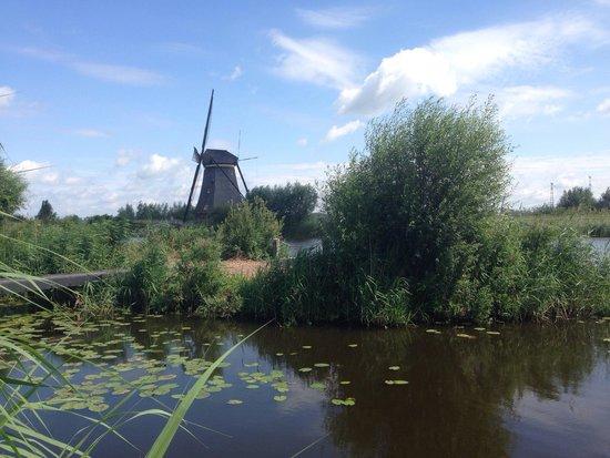 Red de molinos de Kinderdijk-Elshout: Een van de molens in Kinderdijk.