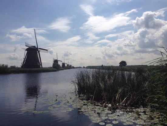 Red de molinos de Kinderdijk-Elshout: Prachtig landschap met de molens.