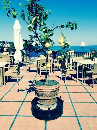 Grand Hotel La Favorita: Dachterrasse zum entspannen!