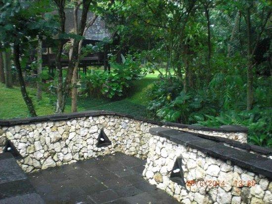 Hotel Novotel Bogor Golf Resort and Convention Center: plentiful greens outdoor