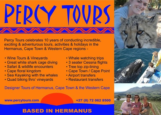 Percy Tours Day Tours : Percy Tours celebrates 10 years of providing excellent holidays