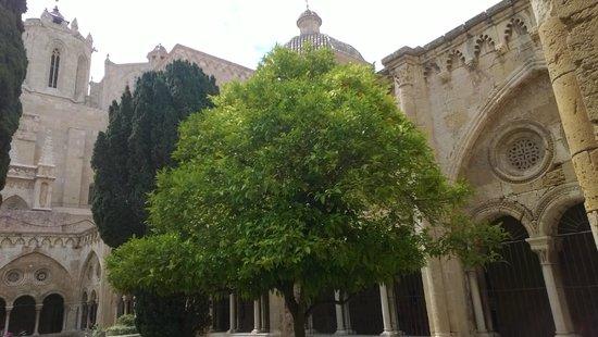 Catedral Basílica Metropolitana Primada de Tarragona: Внутренний дворик собора