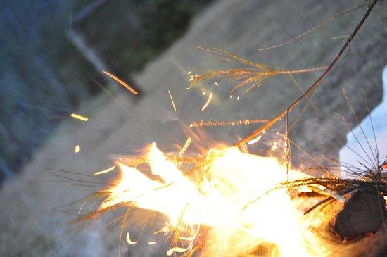 Mt Barney Lodge Country Retreat: Campfire