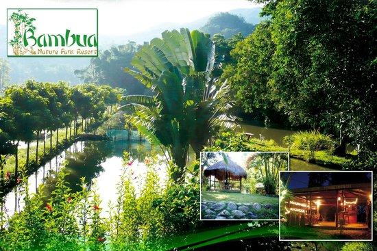 Bambua Nature Park Resort Palawan
