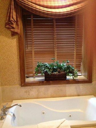 Snake River Lodge and Spa : spa bathtub