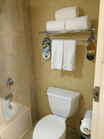 Holiday Inn Express Hotel & Suites Tempe: towels