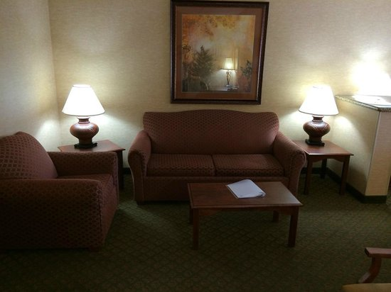Holiday Inn Express Hotel & Suites Tempe: sofa