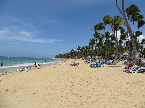 Sirenis Punta Cana Resort Casino & Aquagames: plage de l'hotel