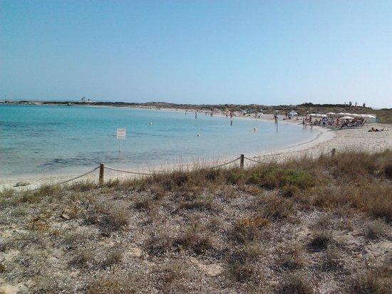 Playa de Ses Illetes: Arrivando dall'accesso al Ristorante Pirata.