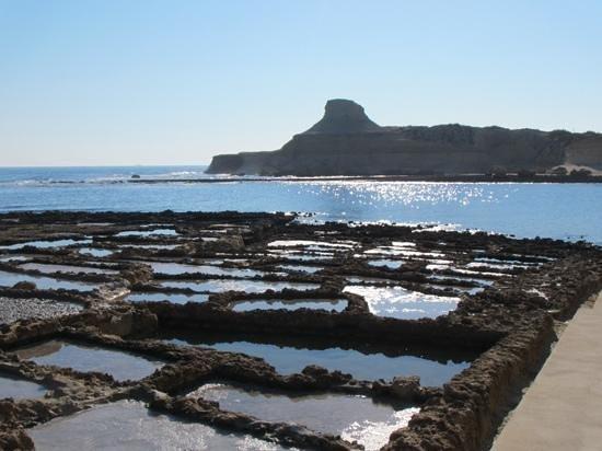 Gozo Segway Tours: salt Pans