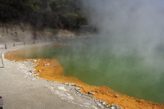 Wai-O-Tapu Thermal Wonderland : Champagne pools