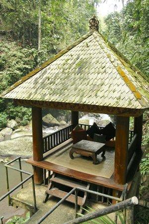 Nandini Bali Jungle Resort & Spa: River