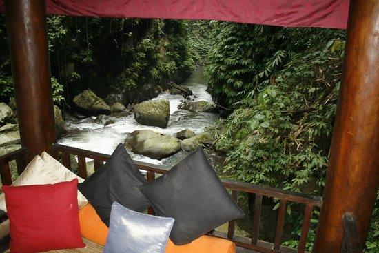 Nandini Bali Jungle Resort & Spa : Rapids