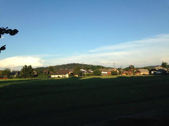 Ambient hotel Domzale : View