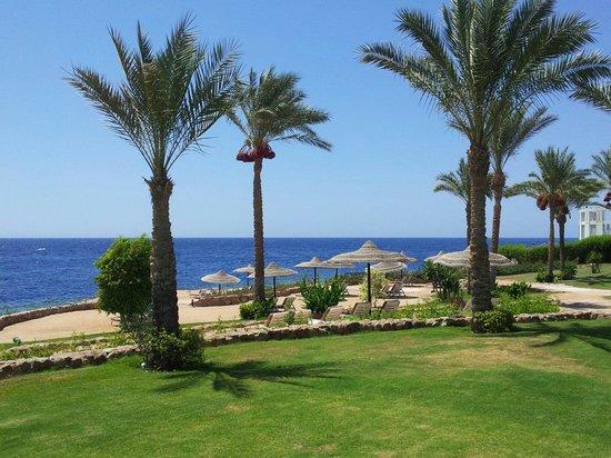 Renaissance Sharm El Sheikh Golden View Beach Resort: Vistia spiaggia privata attrezzata