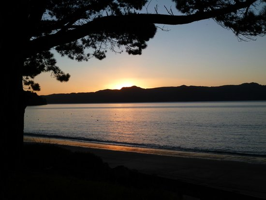 Orua Bay Beach Motor Camp & Accommodation: View from beach front.