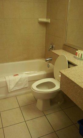 Econo Lodge Inn & Suites Downtown : Bagno