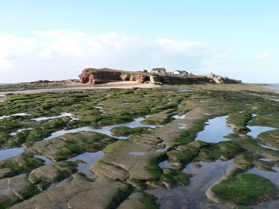 Hilbre Island: Hilbre from Middle Eye