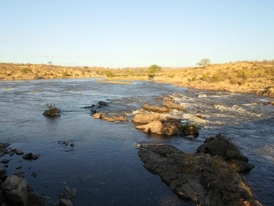 Ruaha National Park: The huge river with crocs and hippos and wading birds