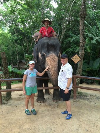 Siam Safari: Up close and personal!  Happy elephants and mahouts!