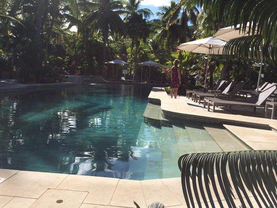 Castaway Island Fiji: Adult pool