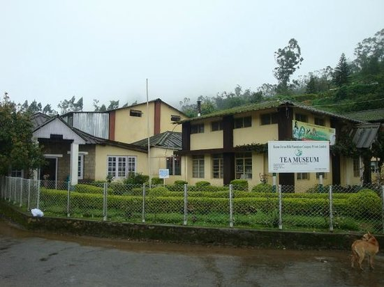 Kannan Devan Tea Museum: Main Building