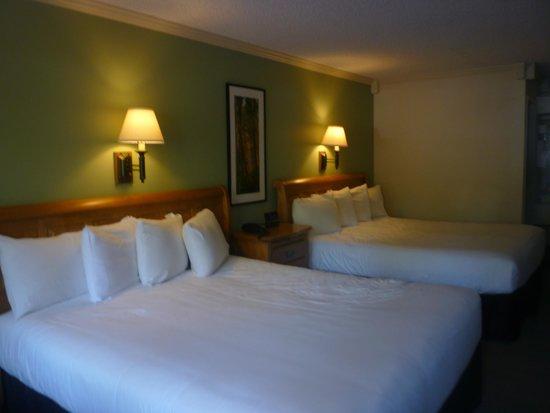 Alpenhof Lodge: chambre triple