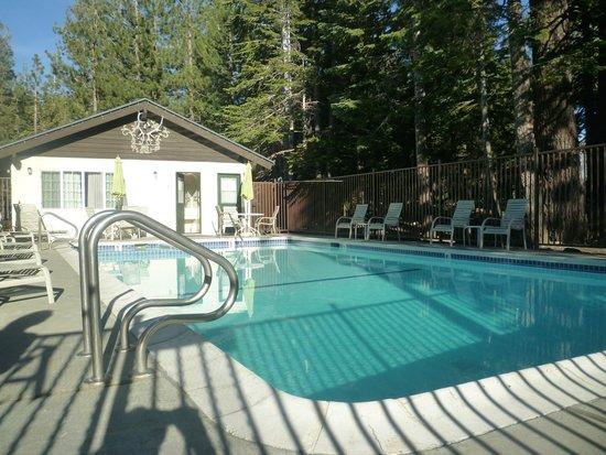 Alpenhof Lodge: piscine