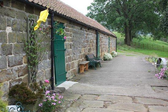 Kildale, UK: Farm area