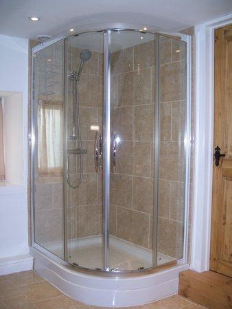 Trevian Lodge B&B: Large Corner Shower
