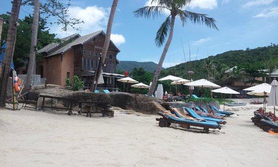 Panviman Resort - Koh Pha Ngan : Nice enviroment