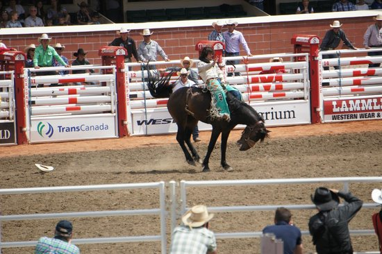Calgary Stampede: Rodeo at its best