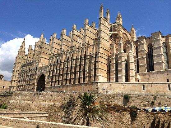 SENTIDO Cala Viñas: Palma Cathedral