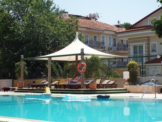 Harman Hotel : Pool area