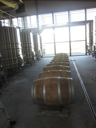 Loire Valley Uncorked: Barrels