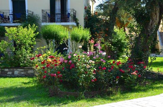 SENTIDO Apollo Palace : balcon et jardin