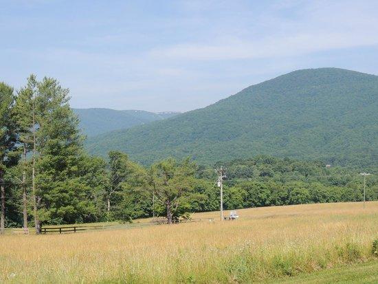 The Mark Addy: Blue Ridge Mountains