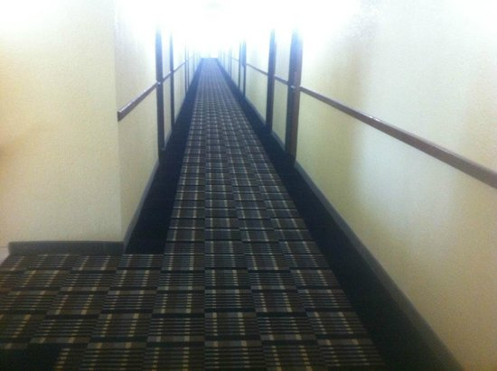 Econo Lodge : New carpets and color in hallways