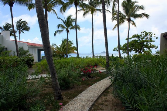 Mango Bay Resort: paved pathway to the beach