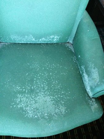 4 A's Inn: Disgusting chair
