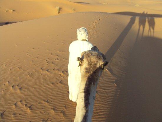 Amazigh Emotions - Day Tours: Por el desierto en dromedario