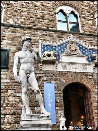 Accademia di Belle Arti (Galleria dell'Accademia): Vista exterior