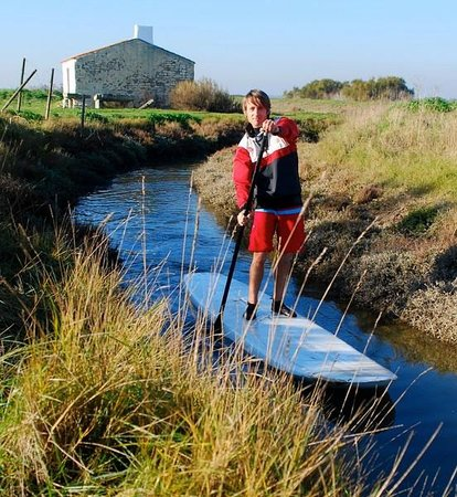 Salicorne Stand-Up Paddle