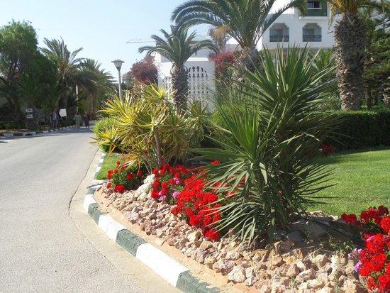 Marhaba Palace Hotel: Hotel gardens