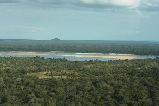 Sand Rivers Selous, Nomad Tanzania: The Rufiji River as you arrive by air