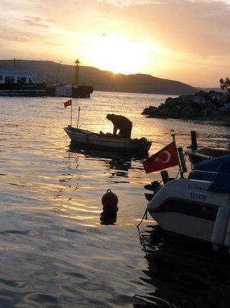 Buyuk Truva Oteli : Sunset over the Dardenelles from near the hotel