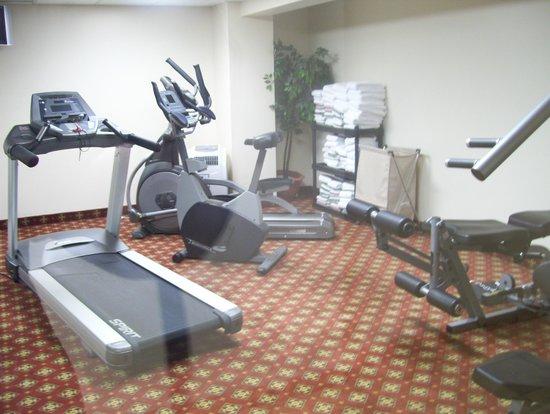 Best Western Plus Gatineau-Ottawa : gym