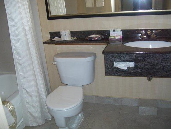 Best Western Plus Gatineau-Ottawa : bathroom